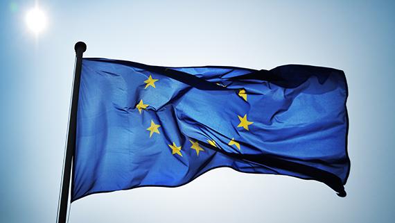 Sector avicola sin ayudas de europa