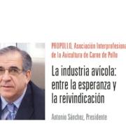 Carnica_Propollo_Antonio_Sanchez